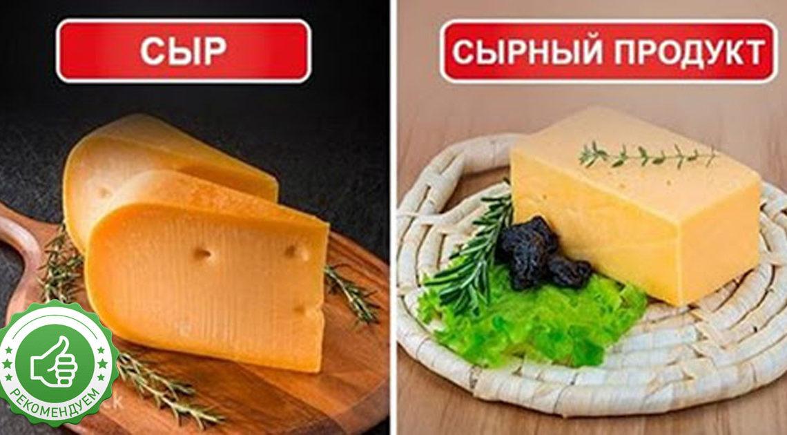 Сыр или сырный продукт, что выбрать