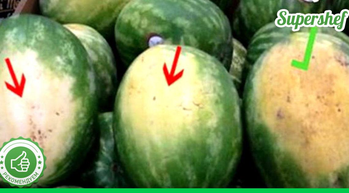 Выбирайте арбузы правильно! Секреты настоящего фермера