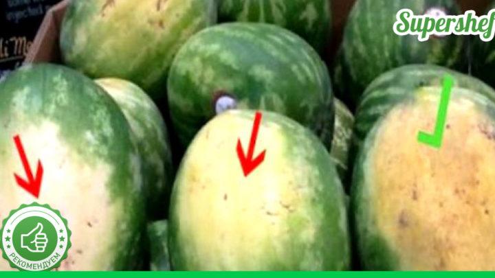 Полезные советы от фермеров: как правильно выбирать арбуз