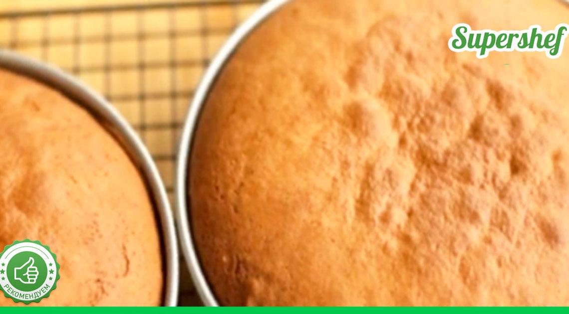 «Ленивый» медовик: тесто без раскатки, и никакой мороки