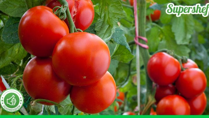 Удобрения для помидоров. 10 вариантов, что добавить в лунку