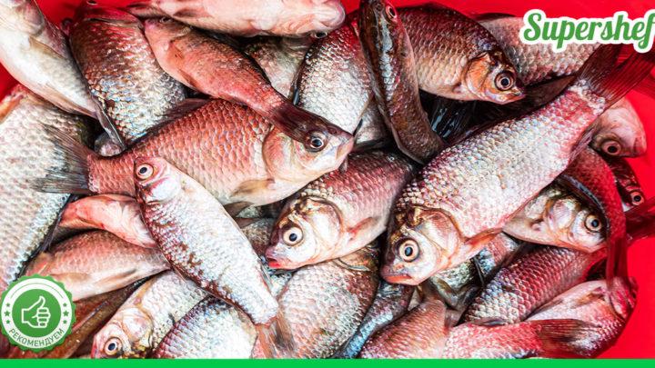 Как нужно готовить рыбу, чтоб в ней не осталось паразитов